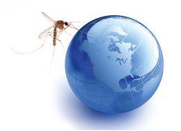 Las nuevas enfermedades víricas emergentes